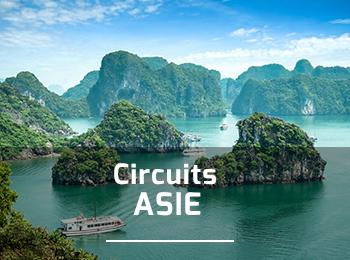 Circuits en Asie